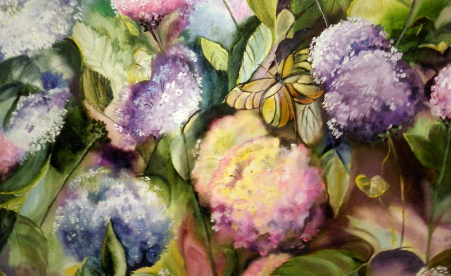 Hydrangeas and Butterfly